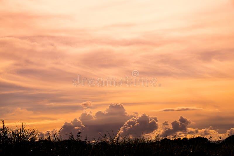 Мягкий апельсин заволакивает небо и трава стоковая фотография rf