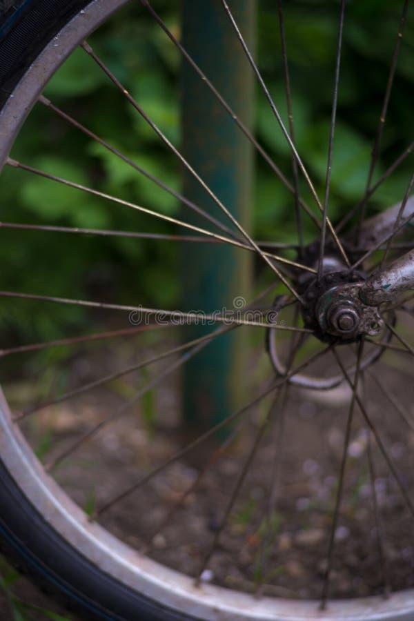Мягкий фокус, красивое bokeh, часть переднего колеса велосипеда стоковая фотография rf