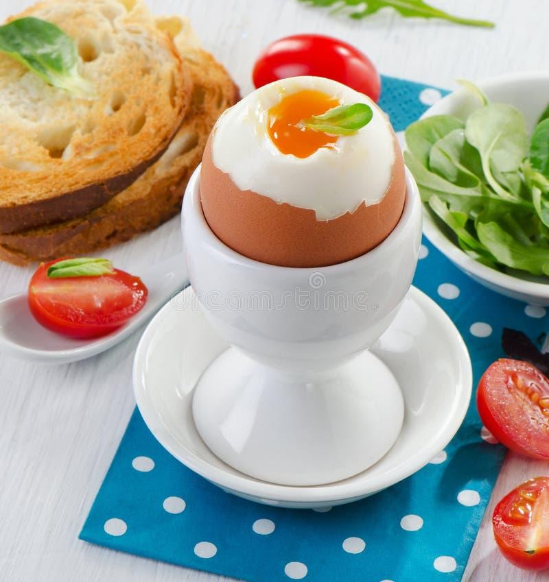 Мягкое вареное яйцо стоковое изображение