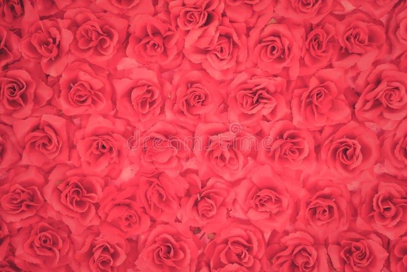 Мягкое focut красное искусственного подняло стоковое фото