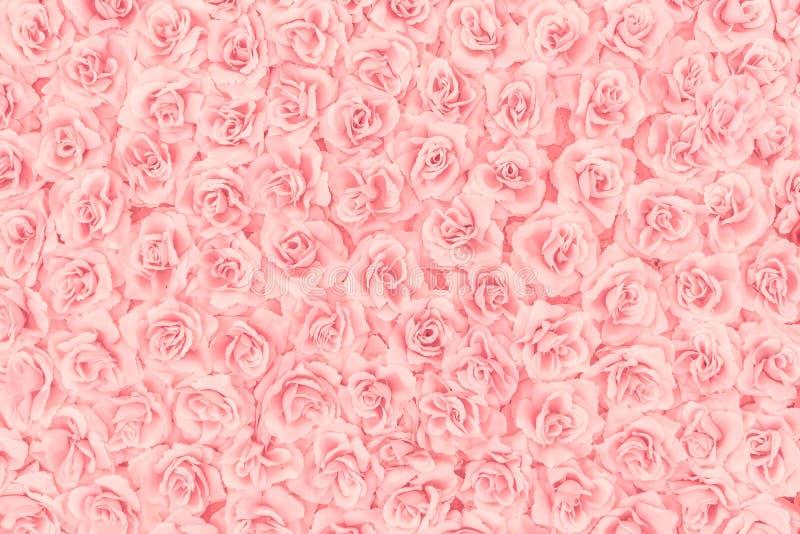 Мягкое focut розовое искусственного подняло стоковая фотография