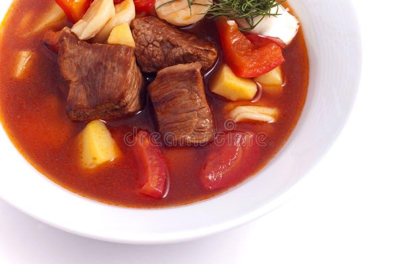 Мясо супа стоковые изображения