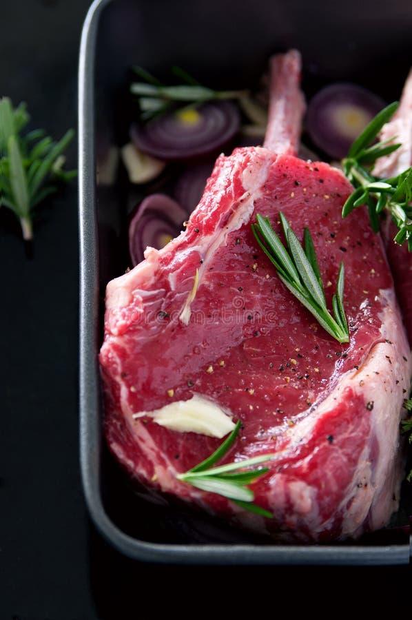 Мясо с специями стоковая фотография rf