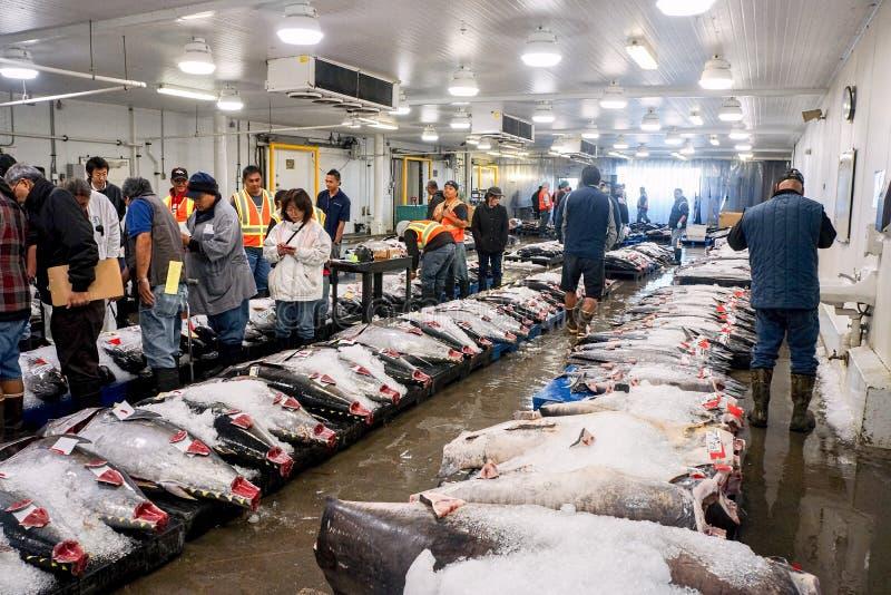 Мясо тунца будучи продаванным с аукциона на рынке стоковые изображения rf
