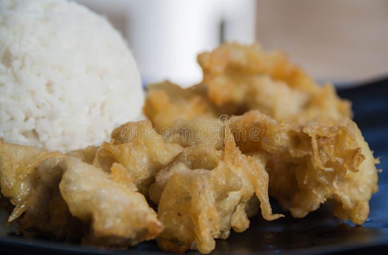 Мясо цыпленка с подъемом стоковое фото rf