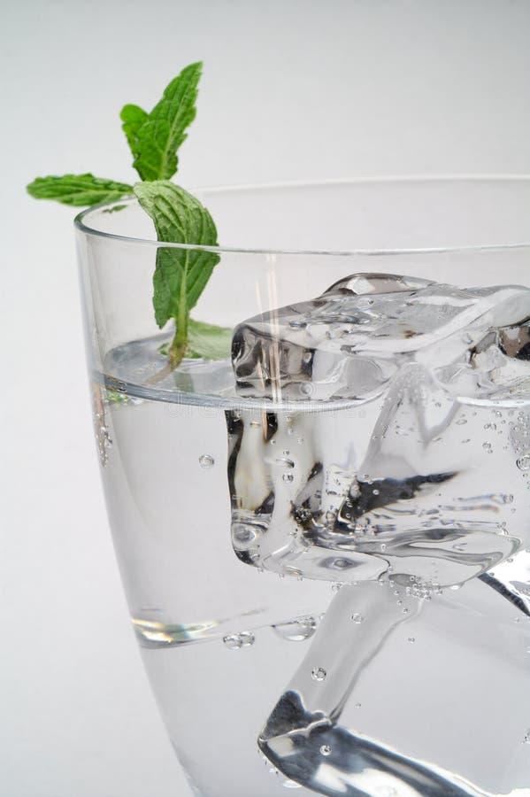 мята льда питья кубиков стоковое изображение