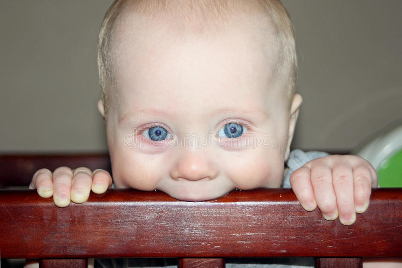 Младенец жуя на шпаргалке стоковая фотография rf