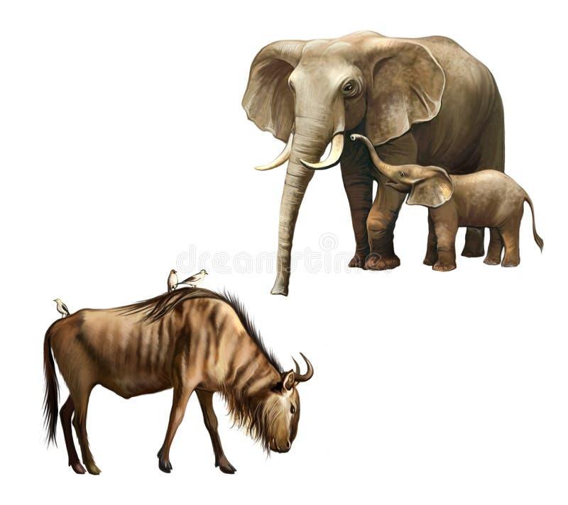 Семья слона: мать и младенец. младенец. Wildebeest с птицами на своей задней части. бесплатная иллюстрация