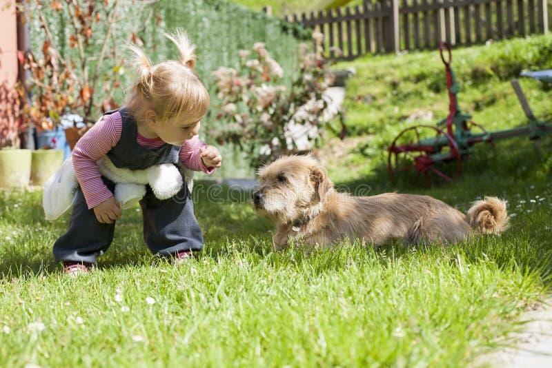 Младенец причаливая собаке стоковое изображение
