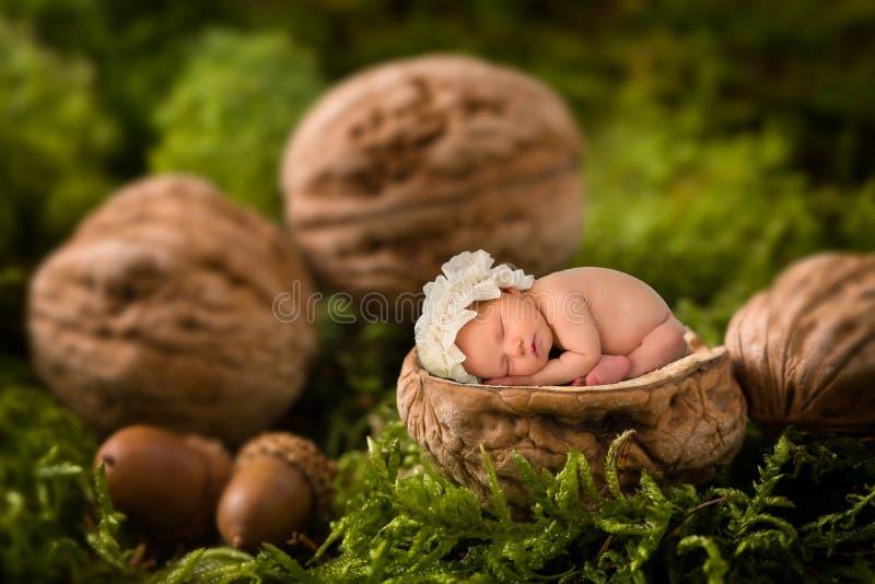 Младенец спать в грецком орехе стоковое изображение