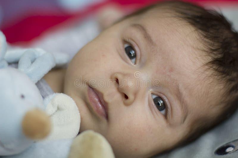 младенец newborn стоковые фотографии rf