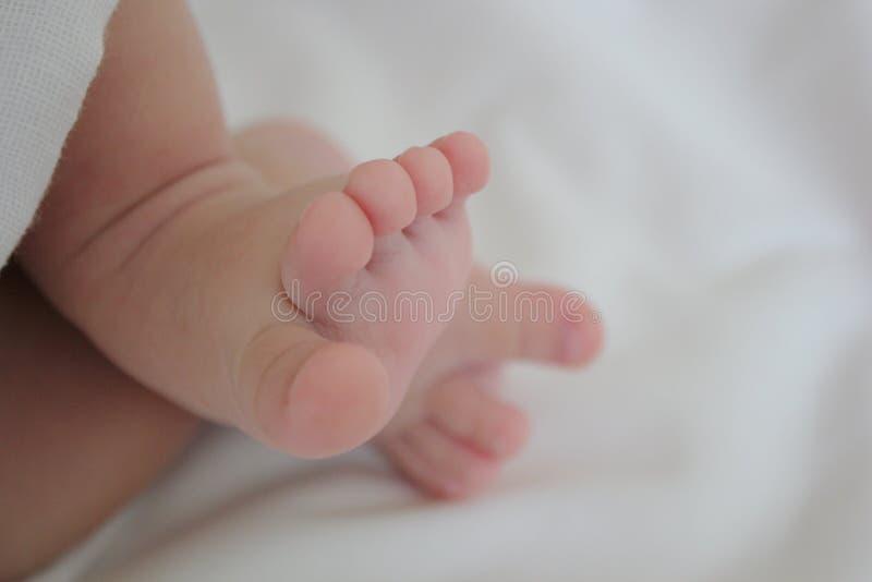 Младенцы мальчика ноги ног младенца newborn милые красивые симпатичные стоковая фотография rf