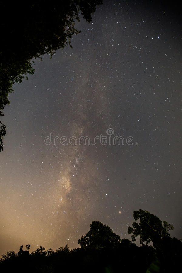 Млечный путь от моей задворк стоковая фотография