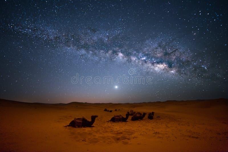 Млечный путь Сахары стоковые фотографии rf