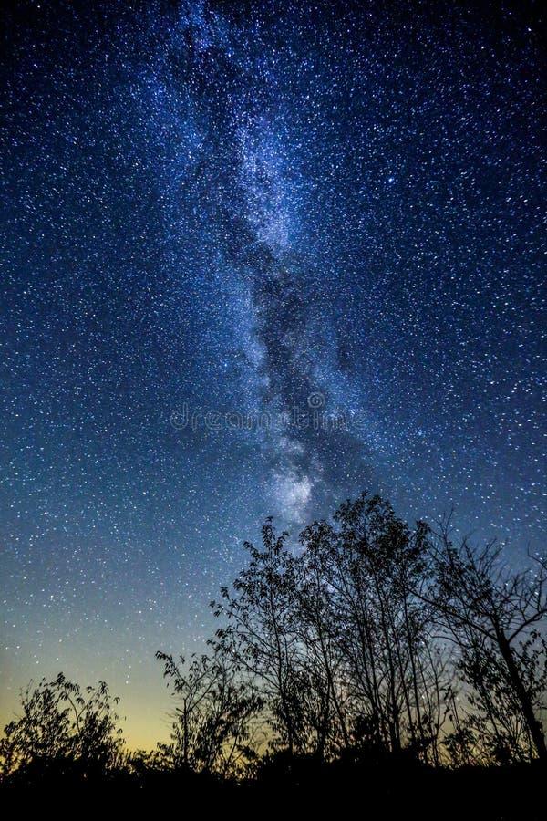 Млечный путь (Темн-небо Torrance Barrens) стоковые изображения