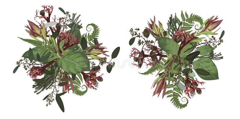 Набор букетов свадьбы, растительности и листьев, ветвей, brunia, зацветая эвкалипта, leucadendron, gaultheria, salal, ятрофы иллюстрация штока