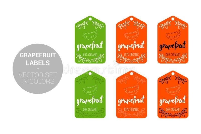 Набор вектора ярлыков Eco плода грейпфрута в зеленых, оранжевых цветах иллюстрация штока