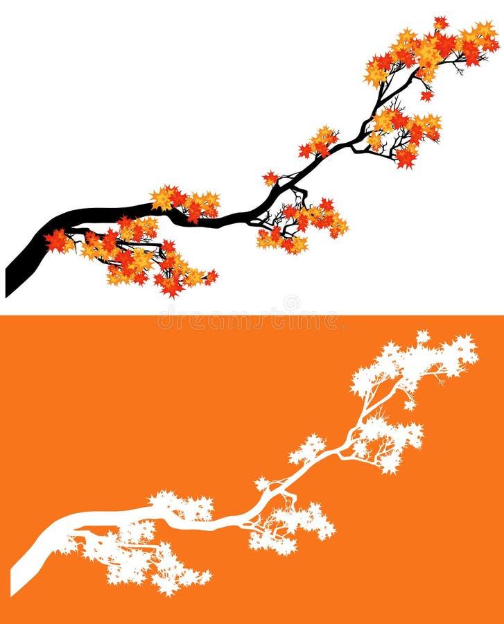Набор дизайна вектора ветви дерева клена осени сезонный иллюстрация штока