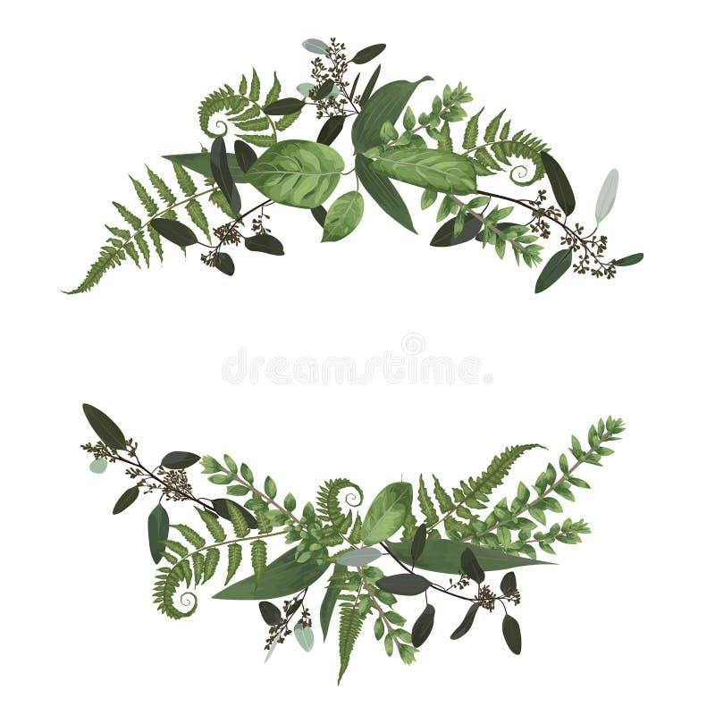 Набор дизайна флористического букета, зеленые лист леса, папоротник, коробка ветвей иллюстрация штока