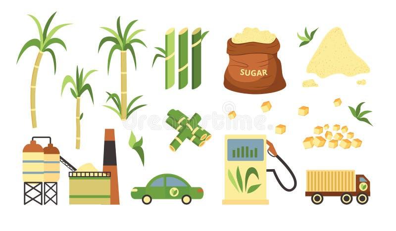 Набор завода и продукции сахарного тростника, альтернативное топливо и cubed и раздробленный порошок сахарного тростника иллюстрация вектора