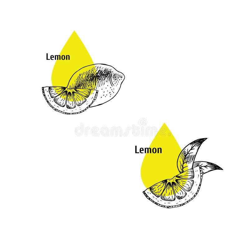 Набор значка масла корки лимона r Выдержка завода r бесплатная иллюстрация