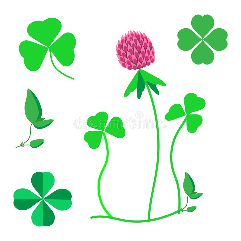Набор листьев клевера, символ везения, цветок клевера бесплатная иллюстрация