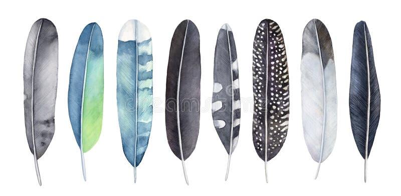 Набор пер акварели Смешивание различных типа, картины и цветов черного, серый, голубой, бирюза, зеленый цвет, желтый цвет иллюстрация штока