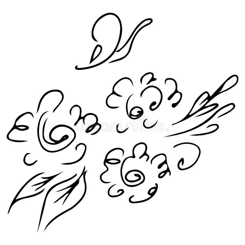 Набор руки вычерченный абстрактный цветков розы или пионов изолированных на белизне Элементы флористического дизайна для вашего п иллюстрация штока