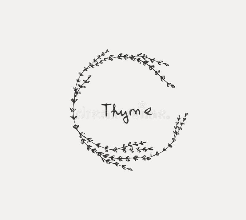 Набор руки вычерченный кулинарной травы Базилик и мята, розмариновое масло и шалфей, тимиан и петрушка Логотип дизайна еды иллюстрация штока