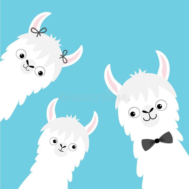 Набор стороны семьи альпаки ламы главный Мать, отец, младенец Характер kawaii милого шаржа смешной Ребяческое собрание младенца Ф иллюстрация вектора