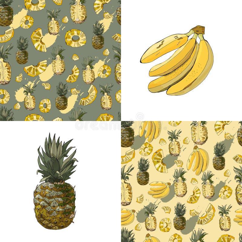 Набор цвета безшовной картины плодов ананаса и банана Все и отрезанные элементы Эскиз нарисованный рукой иллюстрация вектора