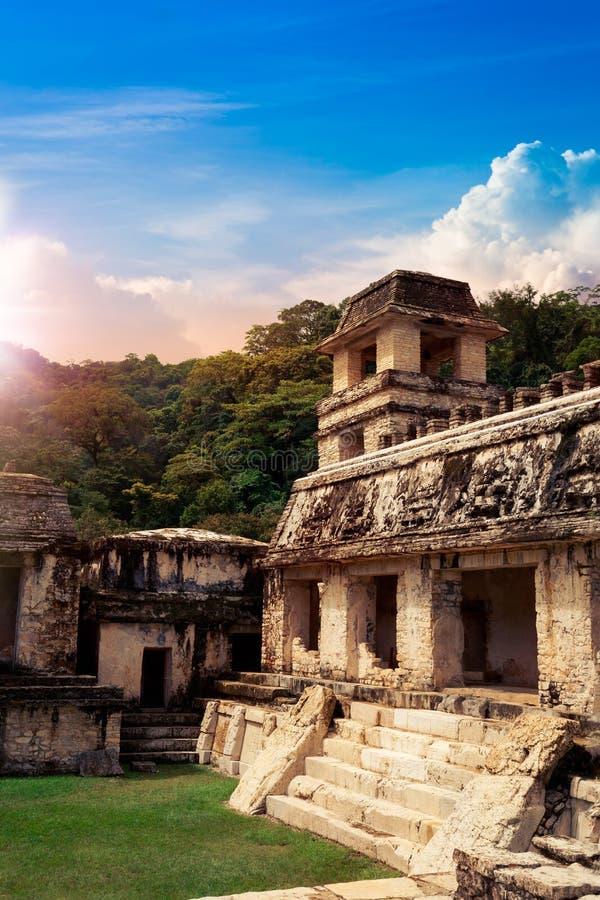 Наблюдательная вышка дворца в Palenque, городе Майя в Чьяпасе, Мексике стоковые фотографии rf