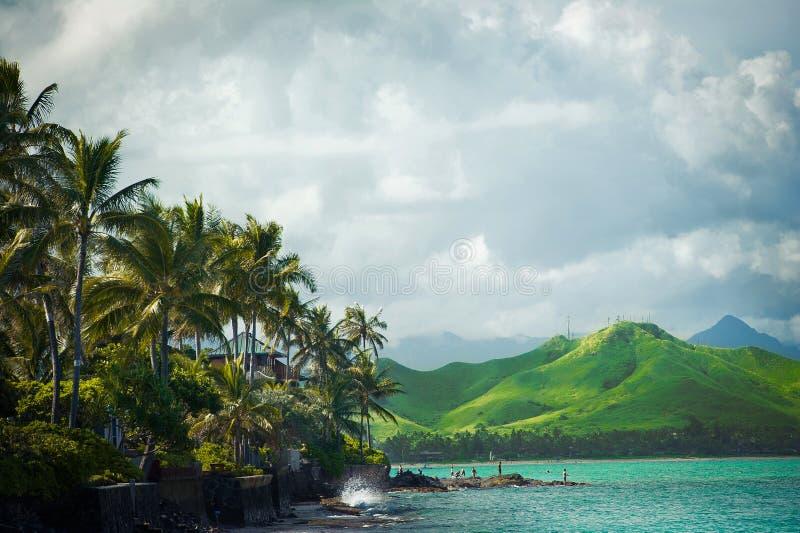 Наветренное побережье каникулы Оаху, Гаваи стоковое изображение