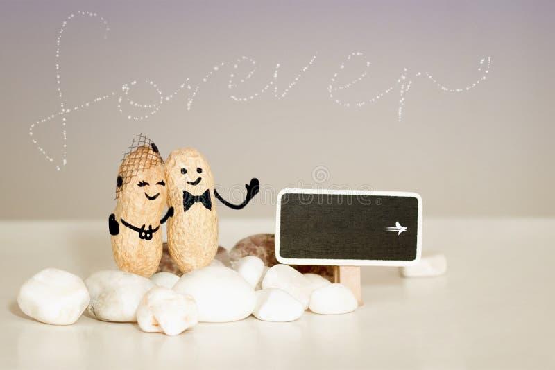 Навсегда идея влюбленности 2 арахиса при вычерченные стороны обнимая на розовой ванильной предпосылке стоковые фотографии rf