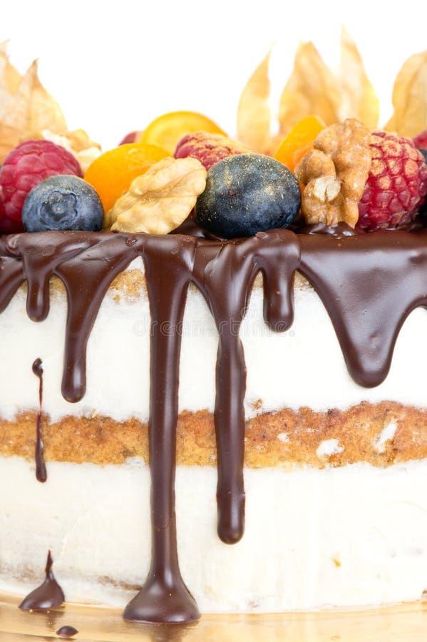 Нагой торт с плодоовощами и шоколадом стоковое изображение