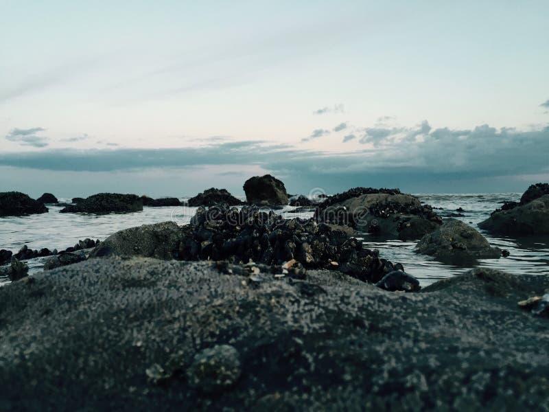 нагруженный ветерком топливозаправщик моря масла стоковые фото