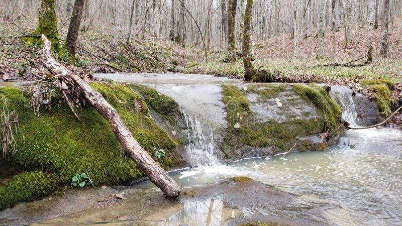 Над более низким водопадом стоковые изображения rf