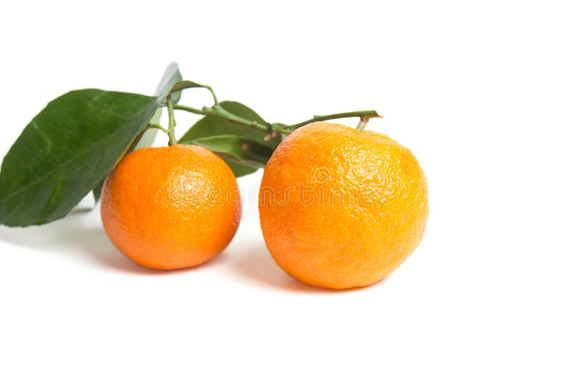 Над взглядом цитрусовых фруктов - апельсинов с листьями изолированными на белой предпосылке стоковые изображения