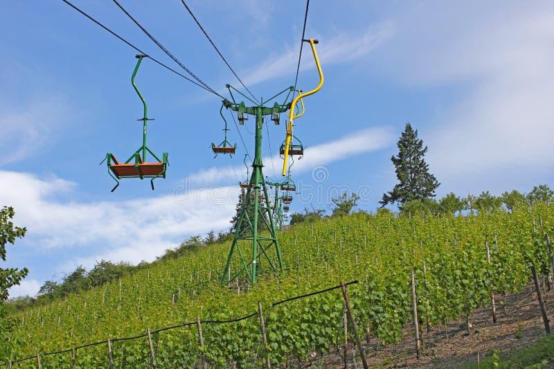 над виноградником chairlift стоковое фото rf
