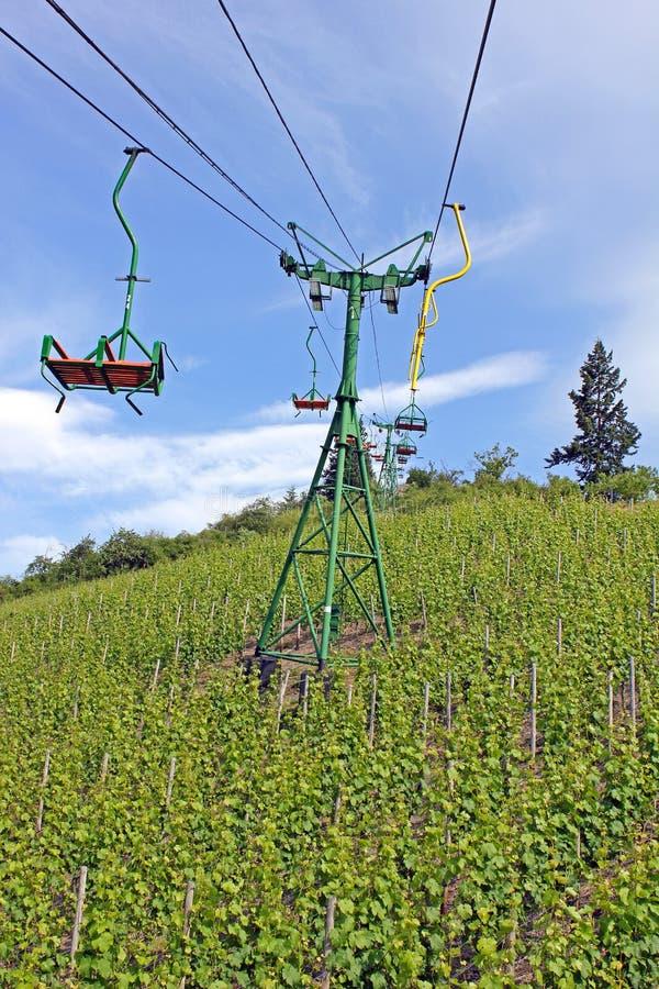над виноградником chairlift стоковые фотографии rf