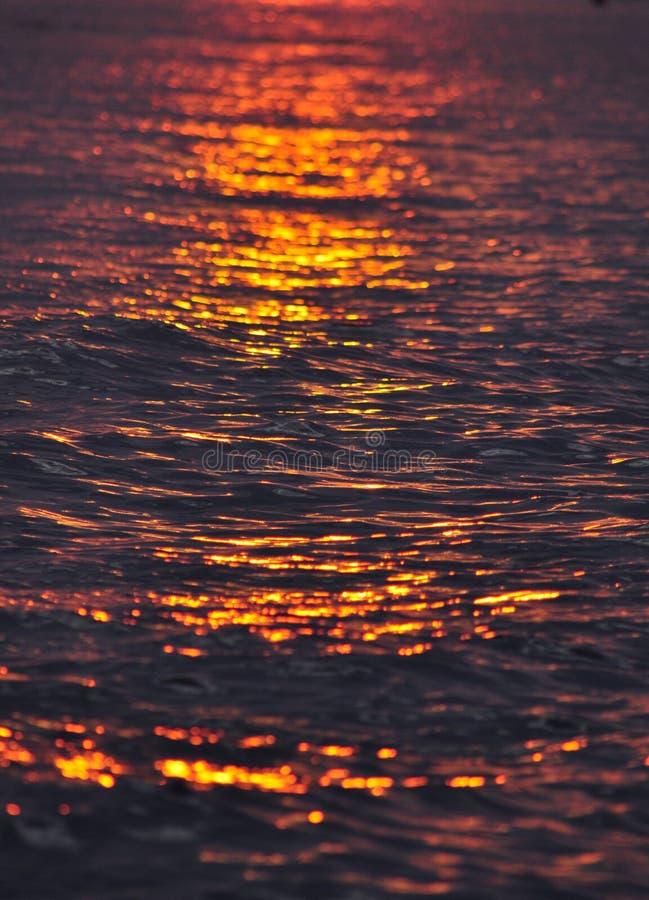 над водой восхода солнца стоковые фотографии rf