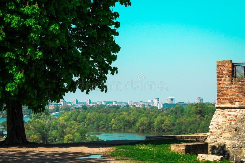 Над городом стоковое фото rf