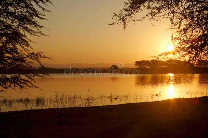 над заходом солнца лотка стоковое фото rf