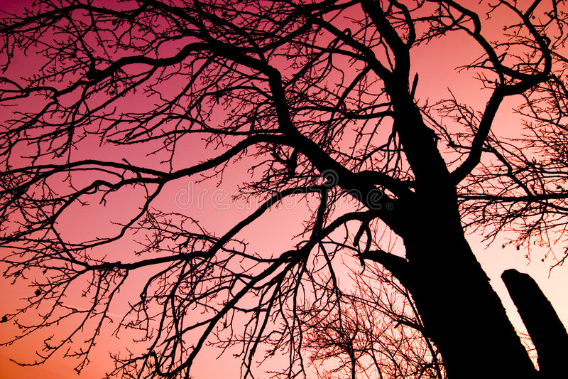 над красным валом неба стоковая фотография rf