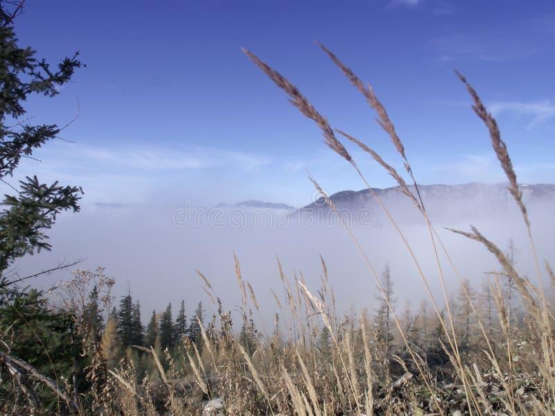 Download над облаками стоковое изображение. изображение насчитывающей снежок - 6856461