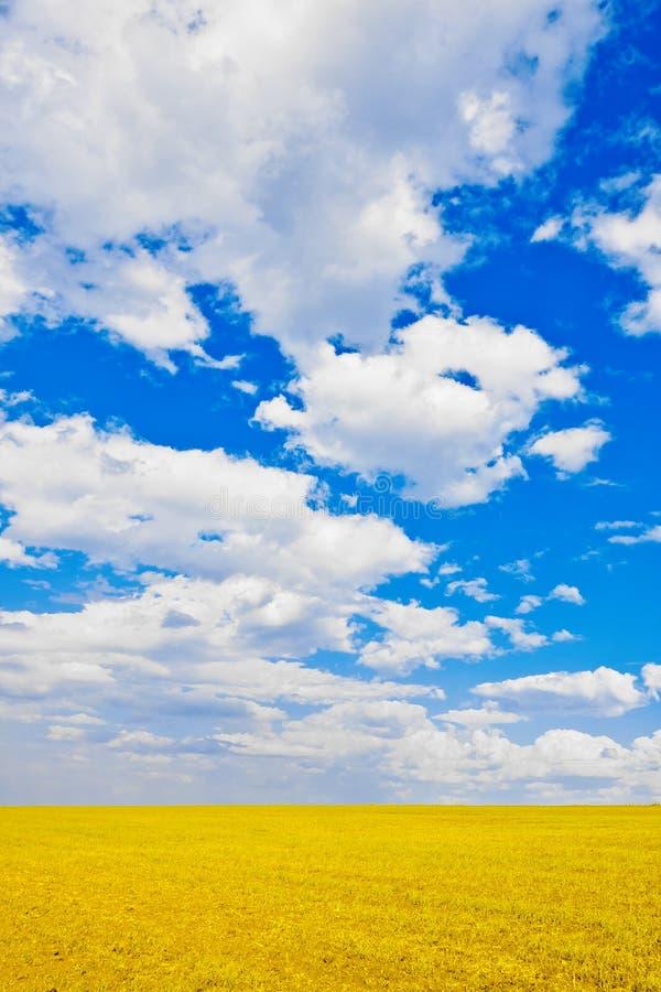 над простым небом стоковые изображения rf