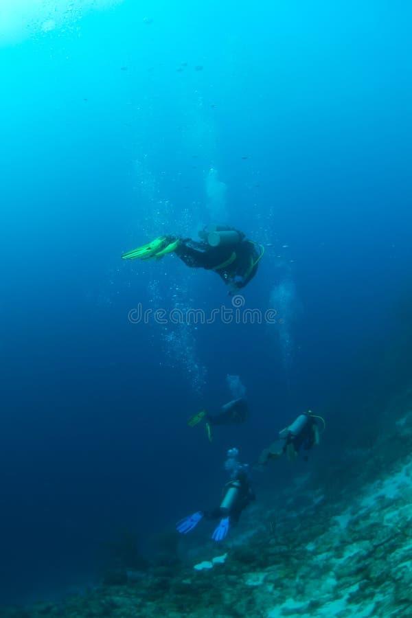 над рифом водолазов стоковое изображение rf