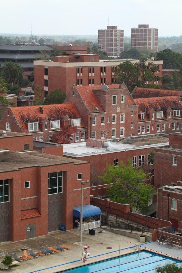 над университетом florida стоковые фотографии rf
