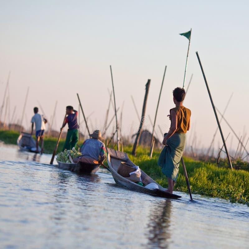 Наемные рабочие на плавая саде, Myanmar стоковые изображения rf