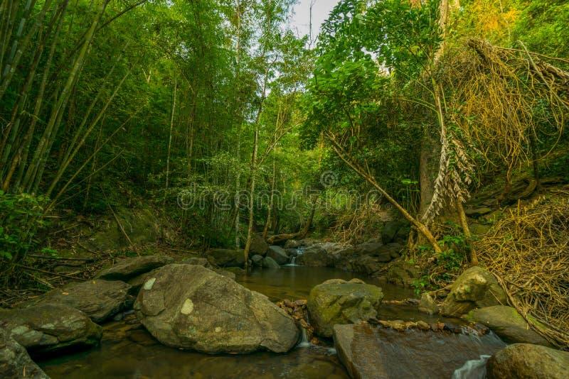 Назначения Рио Celeste перемещения предпосылки природы Рио CelesteCosta Rica назначений перемещения предпосылки природы Коста-Рик стоковое изображение